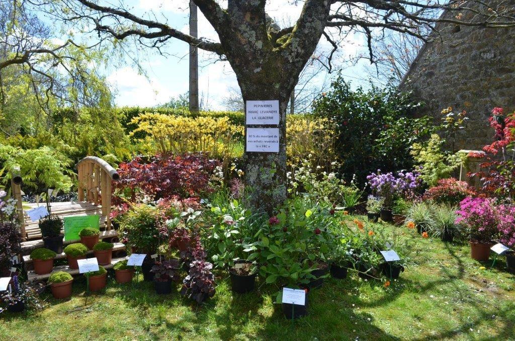 Jardins vue sur les jardins suspendus du recatadou et les for Jardinier paysagiste luxembourg