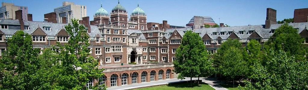 Penn culture de branchement